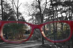 See Clearly the Path to Follow (Cath O'Connolly) Tags: life white black color glasses see blurry clarity can direction driveway fate luck conceptual now clearly select pathways