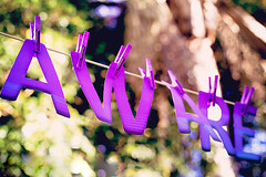 Epilepsy Awareness (Kaylyedescope) Tags: purple bokeh awareness aware epilepsy