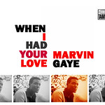 marvin gaye- when i had your love thumbnail