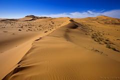 Desert Sand (TARIQ-M) Tags: shadow sky cloud sahara landscape sand waves pattern desert patterns dunes wave riyadh saudiarabia   canoneos5d     goldensand             dahna ef1635mmf28liiusm canoneos5dmarkii        tariqm  aldahna  tariqalmutlaq ripplesripple
