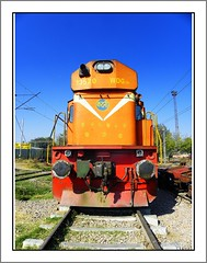 Standing Tall (KATNI WDG-3A #13520) (Trains Unlimited !!!) Tags: new sun india yard train asia diesel kodak delhi indian shed engine rail loco trains steam special engines rails locomotive express passenger fans sameer railways locomotives newdelhi vta ssb kte alco fanning indianrailways railfanning shalimarbagh wdm elco irfca wdm3a wdm2 ndls katni isrs wdg3a wdm2a wdm3 flickraward z980 kodakz980 shakurbasti indianrailwaystrains sameer7678 diesellcocmotives localrailfanning indiansteamrailwaysociety indianrailwaysfanclub indianrailfanclub