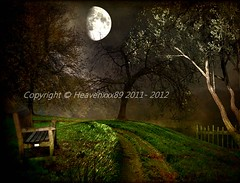 A seat with A view (heavenxxx89) Tags: uk trees england london texture bench landscape scenery fullmoon hampstead hampsteadheath textured creativeart texturedlandscape magicunicornverybest photoshopcs5 ringexcellence