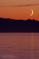 Setting Moon (Jim Lundgren Photography) Tags: ocean statepark park travel sunset sea sky orange usa moon mountain mountains color colour nature vertical mystery america outside outdoors evening coast washington colorful skies peace exterior shorelines natural pacific outdoor dusk united shoreline scenic parks dramatic sunsets peaceful tranquility jim location ridge coastal shore serenity mysterious pacificnorthwest destination coastline astronomy serene states spirituality oceans spiritual shores seashore ridgeline tranquil moonset scenics seas ridges coasts peacefulness crescentmoon coastlines olympicmountains lundgren ridgelines seashores toursim