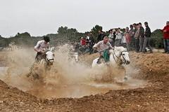 Vendargues, 10me rencontre des Gardians (kat's here) Tags: horse cheval caballos chevaux cadoule gardians lacadoule coursedegardians vendcadou