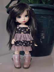 New hair for Bailey (*alexisbears*) Tags: wig bonnie jojo monique baily brownblack pukifee