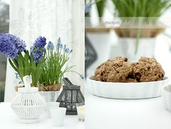 spring bulbs & cookies ~ (Iro {Ivy style33}) Tags: white grey lilac lanterns homemadecookies blogpreview springtablescape domesticstorieswithivy springbulbscookies~weekendshots