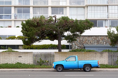 Blue pickup (DodgeMedlin) Tags: california blue tree green yellow nikon sandiego pickup socal southerncalifornia coronado d5000 coronadoshores strandway