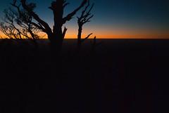 Sunrise (tjrehmann) Tags: newzealand forest hiking hut cameron teresa pastures hawkesbay sunrisehut