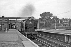 30902 WELLINGTON passing through Grove Park with a down train - 3 September 1955 (pondhopper1) Tags: monochrome steam railways 440 grovepark schoolsclass