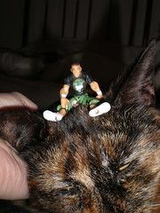 John Cena vs the Cat Monster