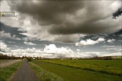 Nature (~FreeBirD~) Tags: uk summer england nature photoshop way warm cloudy britain path vivid direction layers colourful trim tones cloudscape hertfordshire naturewalk herts beautyinnature manibabbarphotography