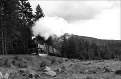 99 7222 5 (RhinopeteT) Tags: railway steam east german harz