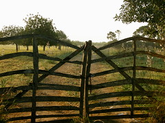 place doors to open fields / Explored (florenarocena) Tags: fence doors champs porta fields campos valla tre puertas portes barreras barrieres ateak 100commentgroup mygearandme