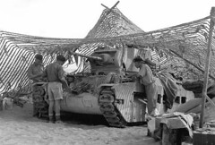 """British tank Matilda camouflaged • <a style=""""font-size:0.8em;"""" href=""""http://www.flickr.com/photos/81723459@N04/13737376704/"""" target=""""_blank"""">View on Flickr</a>"""
