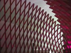 DSCF9954 - Museu do Amanh - Rio de Janeiro - Brasil (Marcia Rosa ()) Tags: brazil arquitetura brasil riodejaneiro museum architecture museu line straight curve tomorrow santiagocalatrava linha curva reta amanh marciarosa
