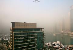 Foggy morning - No.1 - Dubai Marina, UAE (kadryskory) Tags: city trip morning travel urban water fog clouds marina buildings boat dubai skyscrapers yacht uae foggy dubaimarina kadryskory