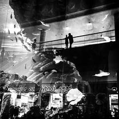 Dubai Mall (damonjah) Tags: street dubai uae streetphotography damonjahcom bw monochrome streetlife