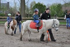 20160418 pony rijden leefgroep1 SP_00046 (leefschool) Tags: pony rijden leefgroep1 20160418