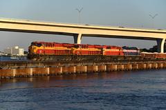 A Golden 202 (Rudy - rufec12) Tags: rock train coast florida railway trains stuart east fl railfan 202 809 714 806 sd402 fec 436 railfanning gp402 es44c4
