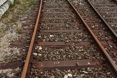 0068_2016_05_16_sterreich_Bischofshofen_Schienen_Walzzeichen_DWZ_1963_Schienenschwelle_(Donawitz) (ruhrpott.sprinter) Tags: railroad schnee salzburg train 1931 germany deutschland austria sterreich do diesel d natur eisenbahn rail zug 1954 cargo berge 1957 nrw passenger 1970 alpen 1980 fret wit gelsenkirchen ruhrgebiet 1962 freight locomotives 1917 1963 1952 lokomotive 1916 2014 schienen sprinter ruhrpott gter 2015 hwr heizhaus reisezug bischofshofen donawitz dwz walzzeichen ellok salzburgtirolerbahn