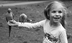 A little girl and two parrots (tuti_s11) Tags: street london monochrome candid streetphotography londres parrots bnw streetshot blackwhitephotography candidphotography blondelittlegirl nikond810 bnwphotography