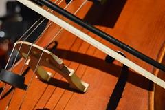5/365 - 25/06/2016 (Rebeca de Sousa Santana) Tags: music cuerda madera cello msica arco clasic orquesta clsica violonchelo