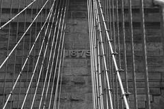 NY-35.jpg