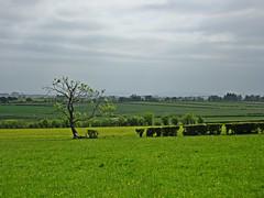 Elysian Fields (Bricheno) Tags: scotland escocia szkocja schottland dunlop ayrshire scozia cosse  esccia   bricheno scoia