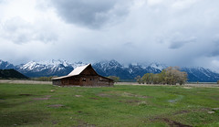 GTY_0155 (Kerri M.) Tags: wyoming grandtetonnationalpark mormonrow barns nationalparks tetonrange tetons
