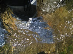Bachwanderung (wetvans) Tags: wellies gummistiefel bottes segelstiefel