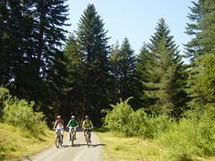 Campaments Estiu Pyrene_Bike Camp (Club Pyrene) Tags: bike summercamp aventura lacerdanya pirineu pyrene campamentos sostenible coloniesestiu
