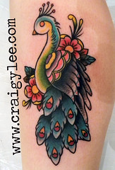 old school peacock tattoo (craigy lee) Tags: old flowers school roses color colour bird london leaves tattoo traditional leg feathers peacock tattoos lee craigy