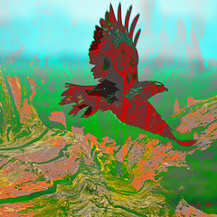 It takes Strong Wings to Fly (Tedje51 - mostly off (very busy)) Tags: manipulation strong rooted hypothetical theart strongwings timnoonanartchallenge