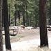 Spencer Campground-1