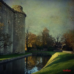 Nunney Castle Moat.....[Explore] (Hotfish) Tags: uk castle texture somerset textures moat nunney