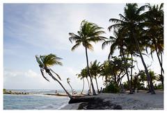 17052012-IMG_9150 (jacques.kayser) Tags: paris france vacances guadeloupe tokheim departementsdoutremer