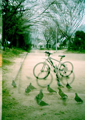 Bicycles or pigeons (SOVA5) Tags: park film bicycle doubleexposure pigeon half fujicahalf konicacolor100expired2005 fujinon128f28cm