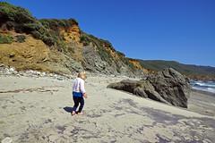 2012-04-28 Big Sur 059 Andrew Molera State Park, Beach Trail