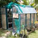 Gil's small green house