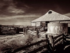 "Lake Mungo shearing shed infrared hand held with Olympus E-M5 • <a style=""font-size:0.8em;"" href=""http://www.flickr.com/photos/44919156@N00/7240846630/"" target=""_blank"">View on Flickr</a>"