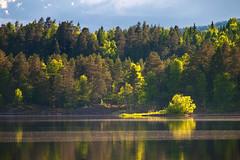 The Andelva Session #1 (Krogen) Tags: norway landscape norge norwegen noruega scandinavia akershus romerike krogen landskap noorwegen noreg eidsvoll skandinavia andelva olympusep2