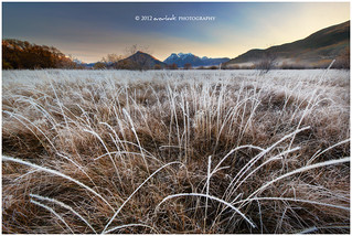 Frostworks