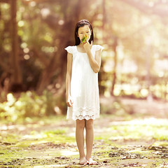 Feathered Friend (brandonhuang) Tags: bird girl light sun sunlight tree trees warm brandonhuang 500d canon t1i 135mm f2 f2l