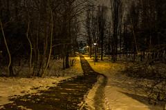 Sosnowiec (nightmareck) Tags: winter night europa europe fuji poland polska handheld fujifilm zima fujinon sosnowiec pancakelens xe1 apsc mirrorless xtrans fotografianocna xmount zagbiedbrowskie xf18mm xf18mmf20r bezlusterkowiec