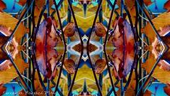 (ojoadicto) Tags: abstract bright abstracto digitalmanipulation artisticphotography colorsaturation
