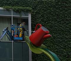scrubbing up (dotintime) Tags: scrub clean wash rinse brighten red pitcher wateringcan outdoor sculpture landscape urban downtown dotintime meganlane utata:project=tw526