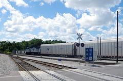 florida 248 (Fan-T) Tags: florida terminal amtrak sanford superliner autotrain