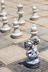 Sarajevo (tm-tm) Tags: europe sarajevo bosnia chess v10 bosna bosniaandherzegovina bosnaihercegovina