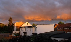 Engelheart Road, Catford (elisecavicchi) Tags: uk trees houses roof light sunset england sky london rooftop clouds gold se golden spring moody purple sundown bright britain dusk vibrant south magic united great kingdom illuminated east evergreen southeast sublime residential brilliant catford