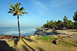 India - Kerala - Varkala - Coastline - 85